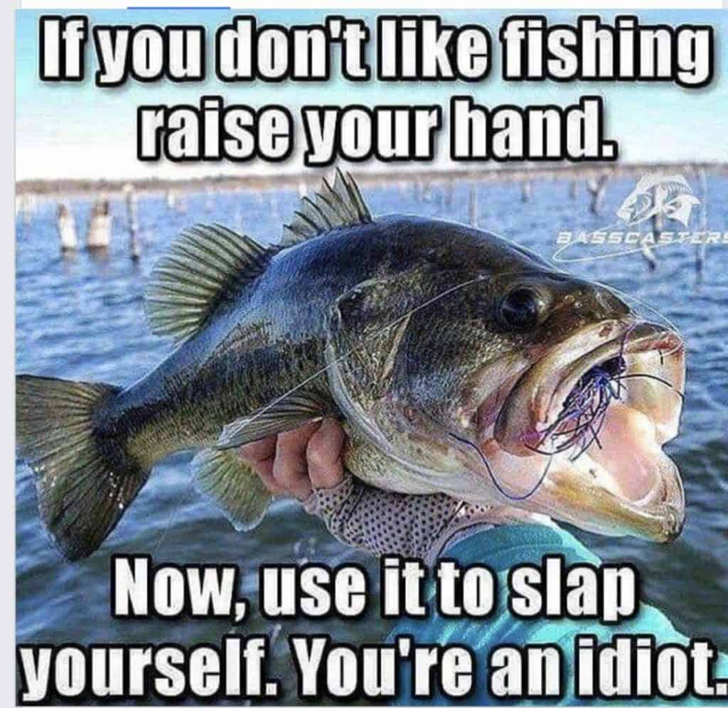 Funny Fishing Memes Fishin Money