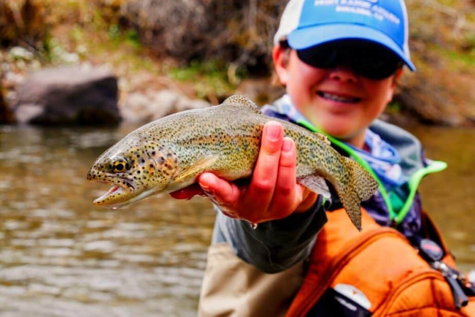 The Best Bait For Trout - Catch Big Ones